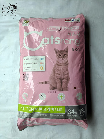 Catsrang Kitten Review