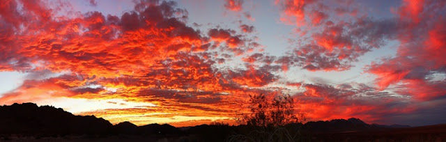 Beautiful Sunset Scenery at Joshua Tree National Park