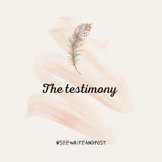 the-testimony-lisa-maurie-see-write-post