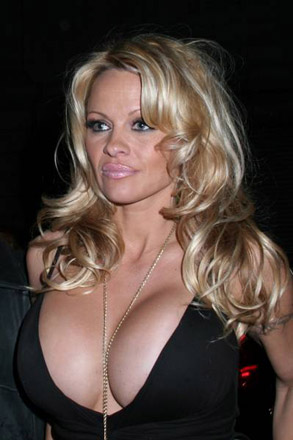 pamela anderson pictures