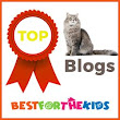Top Blogger Listing