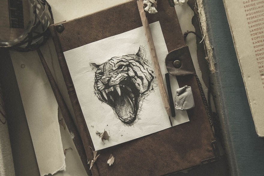 06-The-Tiger-Mike-Koubou-Stylized-Sketchbook-Animal-Pencil-Drawings-www-designstack-co