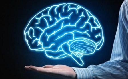 Fakta Unik Otak Manusia bisa Mengecil