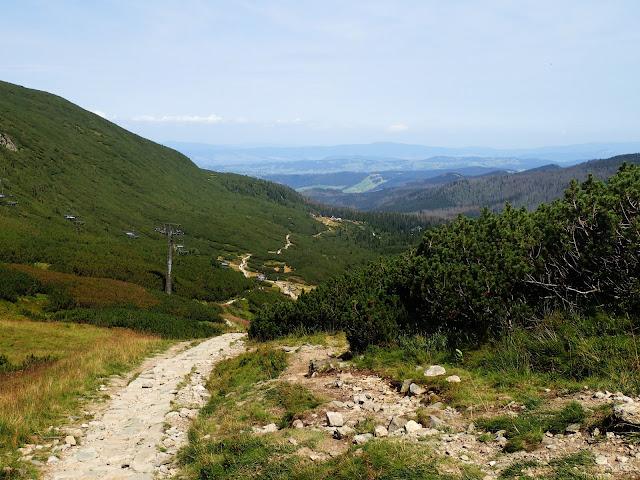 Zielona Dolina Gąsienicowa
