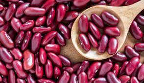 حبوب الفاصوليا الحمراء تحتوي على نوع من الدهون عصيّ على الهضم