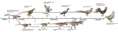 ayam atau telur yang lebih dahulu versi dinosaurus
