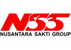 Lowongan Kerja Risk Analyst di Nusantara Sakti (NSS)