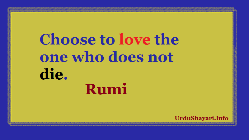 Choose to love the one who does not die rumi
