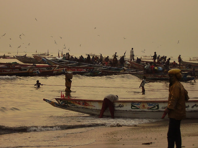 P1210032 ▷ Llegada de Pescadores al Puerto de Mbour