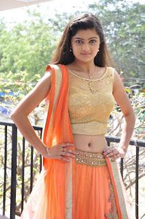 Actress Pallavi Naidu Stills in Half Saree at Lord Shiva Creations New Movie Launch 0011.jpg