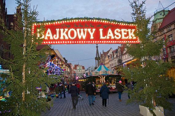 Bajkowy Lasek Wrocław jak wygląda?