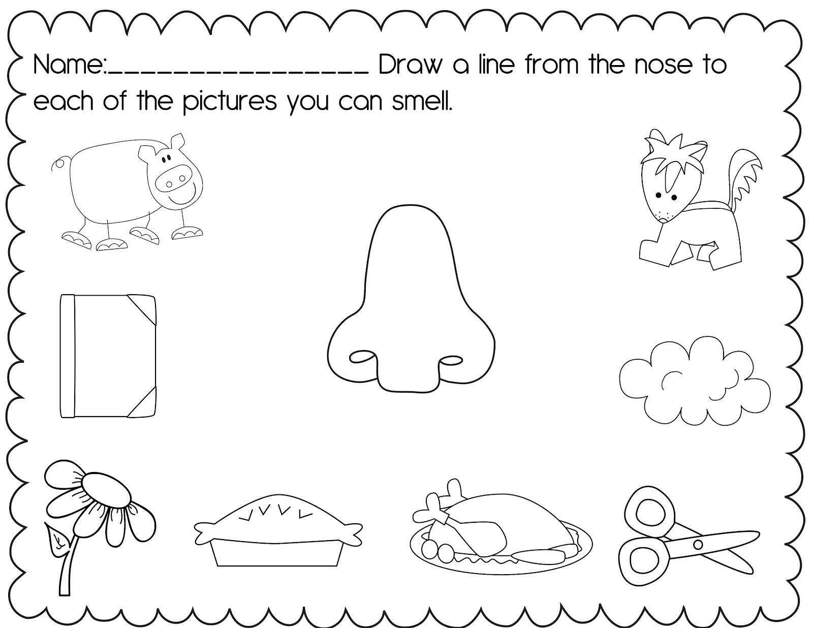 Free 1st Grade Science The Five Senses