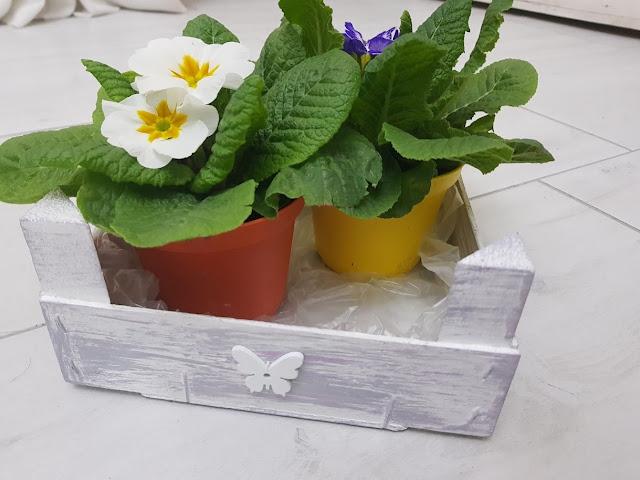 riciclo creativo cassetta della frutta, porta oggetti sottovaso creativo