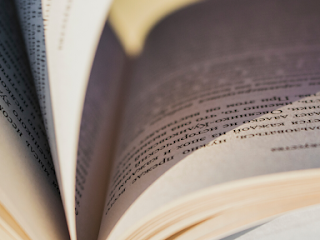 Tipe-Tipe Penulis Yang Baik Dan Disukai Banyak Pembaca