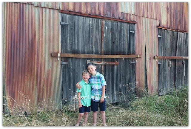 Jbigg Life In Kentucky Barns Blooms And Birds Wk 5