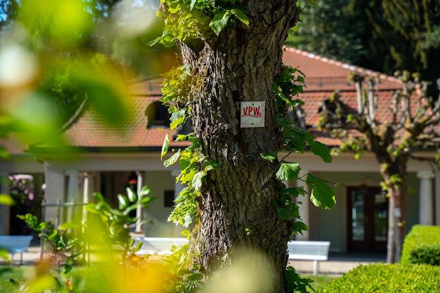 Vogtland Panorama Weg  Etappe 7 von Bad Brambach nach Markneukirchen  Wandern in Sachsen 01