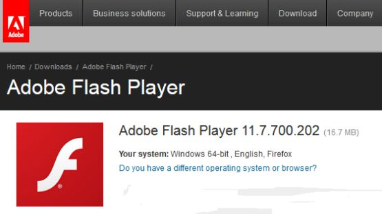 Adobe flash player 11 screenshot 3