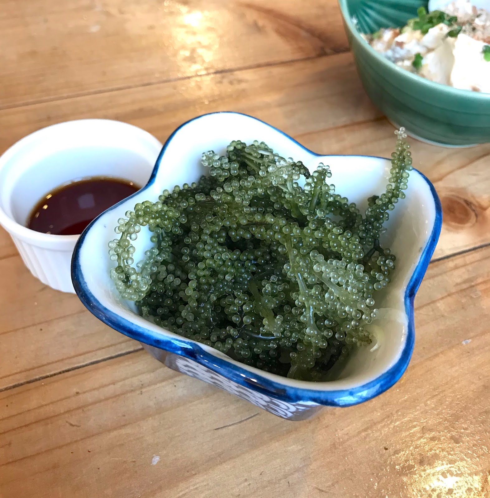 Ishigaki-Okinawa-Japan-Must-Eats-umibudo-sea-grapes
