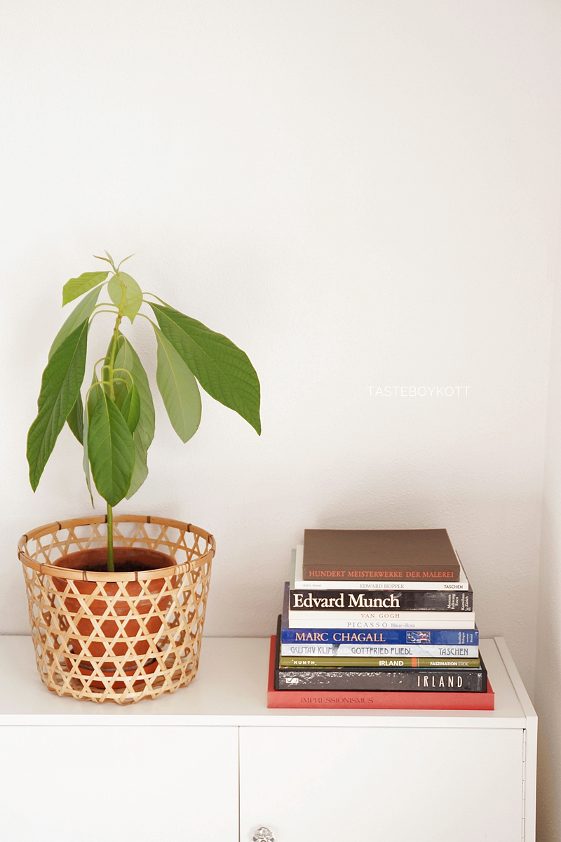 sideboard summer styling with avocado plant, woven basket and colorful coffee table books