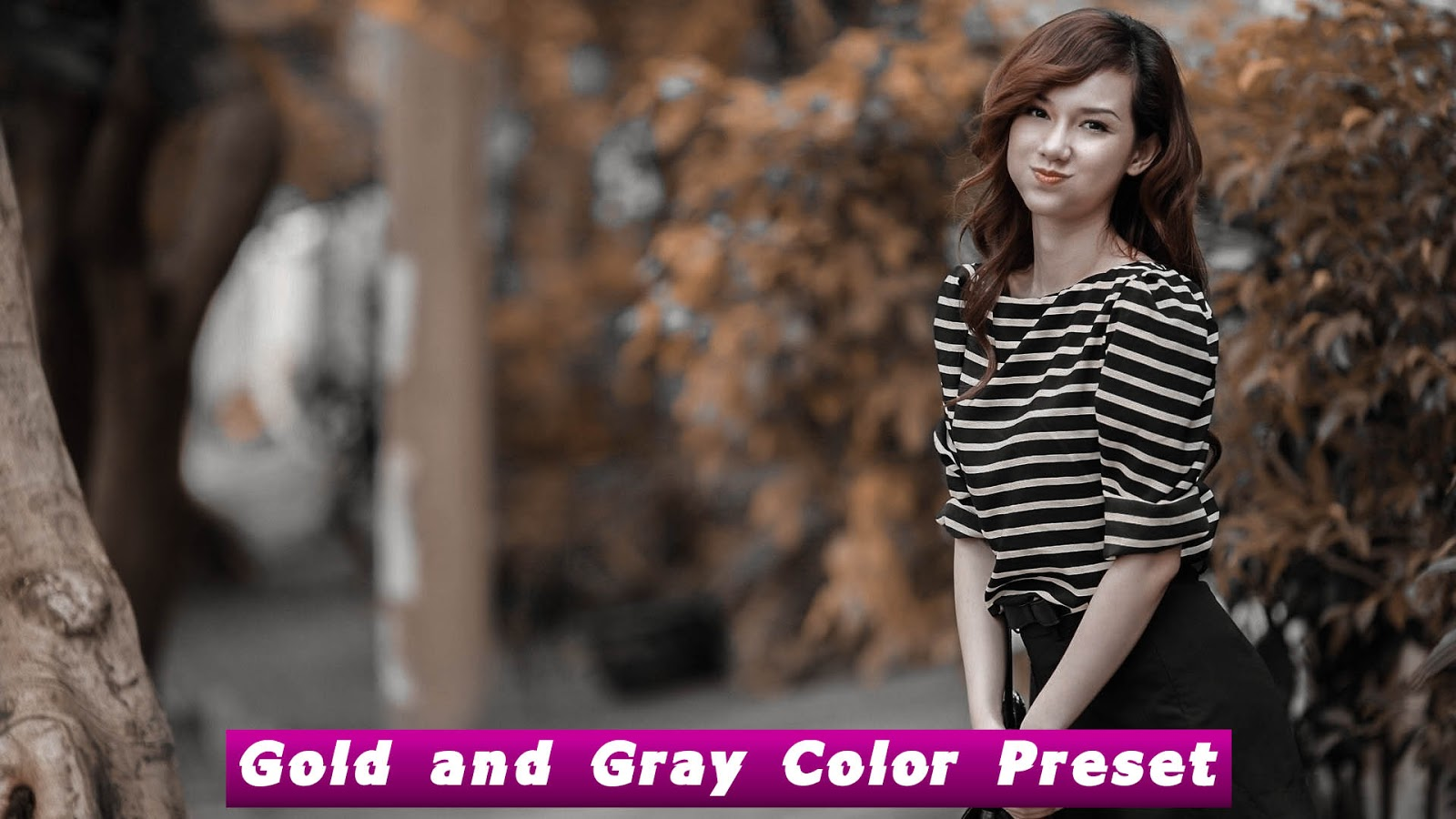 Gold and Gray Color Camera Raw Preset Free Download