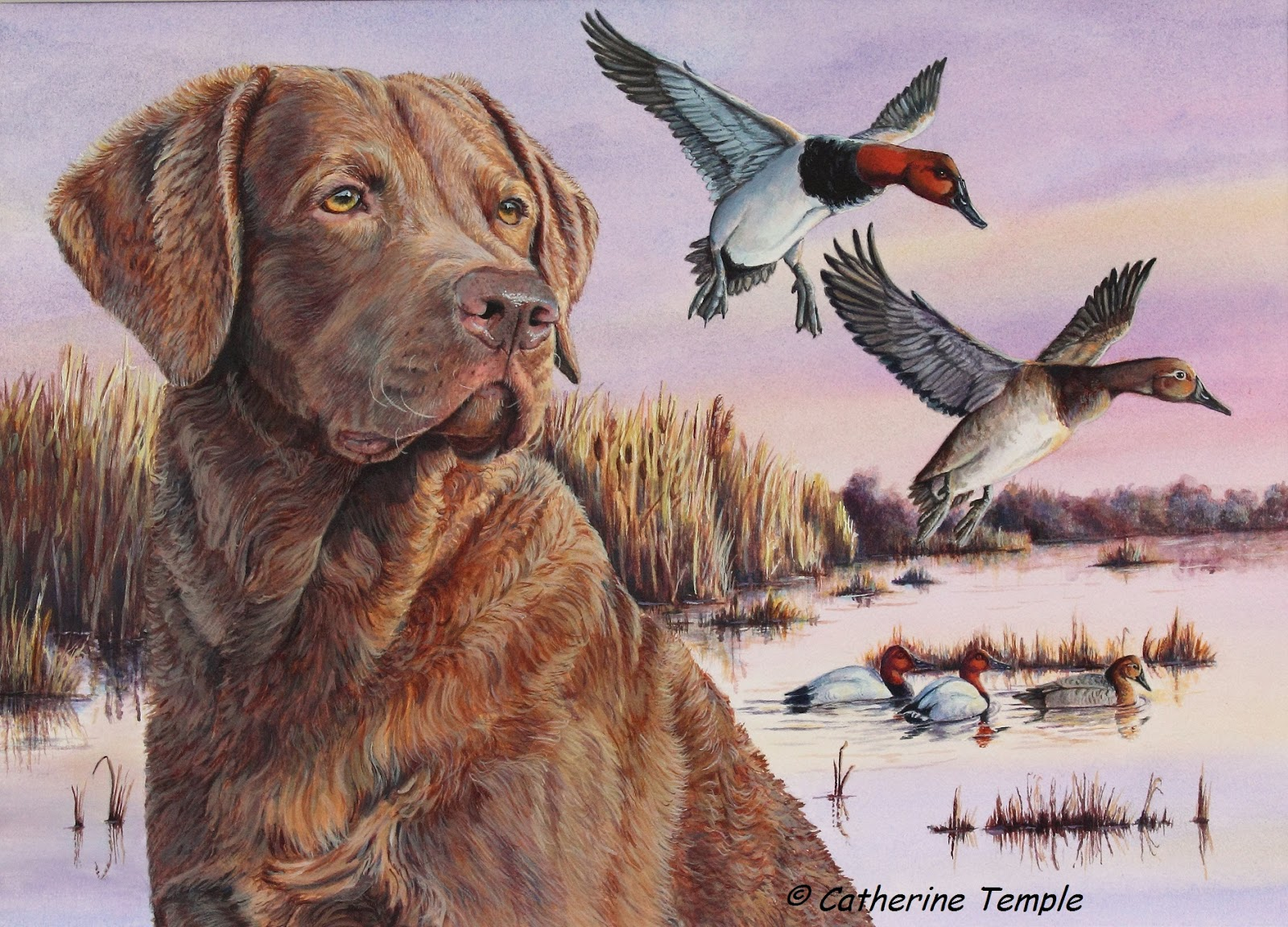 Winner 2017 Delaware Duck Stamp Competition