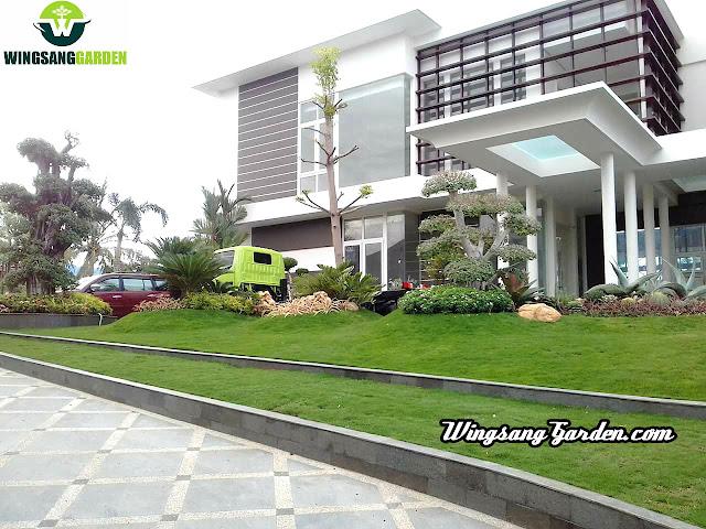 Tukang Taman Bintaro | Jasa Pembuatan Taman Di Bintaro