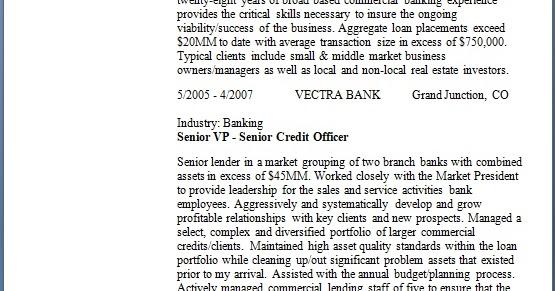 senior vp senior credit officer sample resume format in