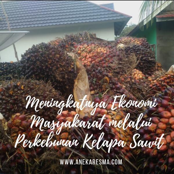 Meningkatnya Ekonomi Masyarakat dengan Perkebunan Kelapa Sawit