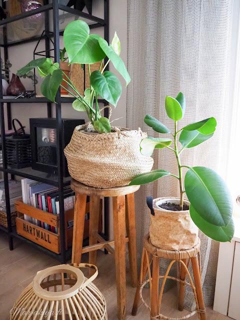 olohuone sisustus kierrätyskoti kirppistelijä boheeemi boho viherkasvit
