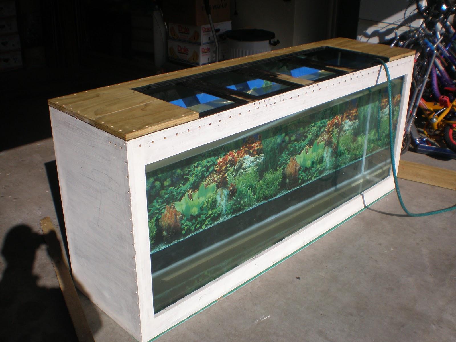 Diy Plywood Aquarium Diy Plywood Aquarium