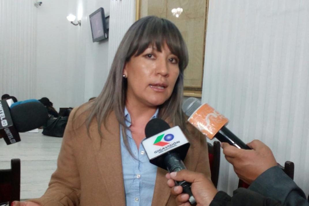 Diputada Mallón en declaraciones a los medios de cobertura en la Cámara Baja / PRENSA UN