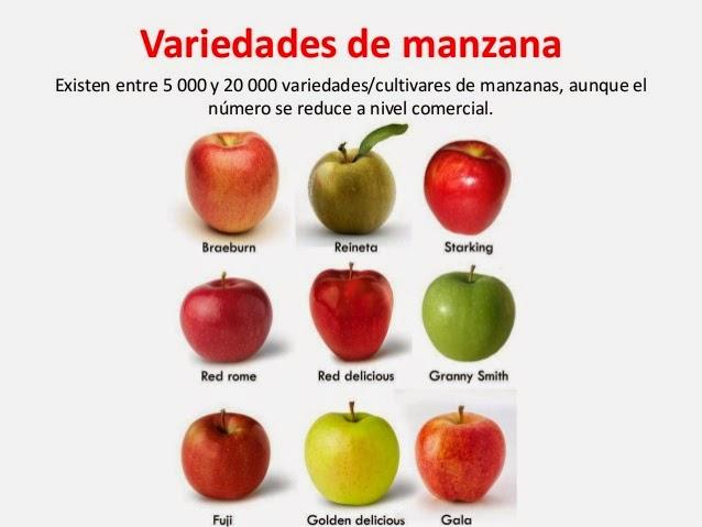 Enroque de ciencia manzanas con piel o sin piel - Pure de castanas y manzana ...