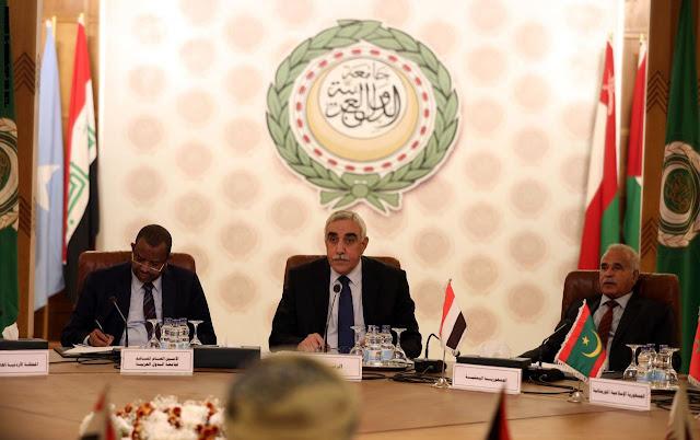 مصر: تحركات تركيا تنم عن أطماع في ثروات ليبيا.. ونُحذر من إرسال قواتها لطرابلس