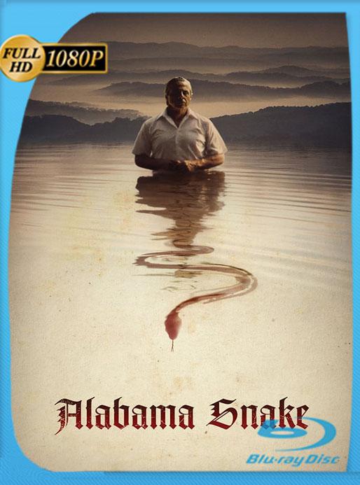 La Serpiente De Alabama (2020) AMZN WEB-DL 1080p Latino [GoogleDrive] [tomyly]