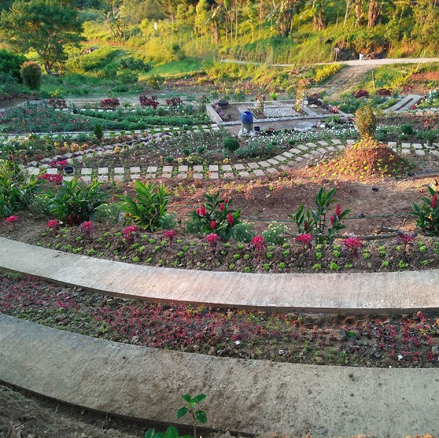 The garden photographed last April 16. Grabbed from Buwakan Ni Alejandra page.