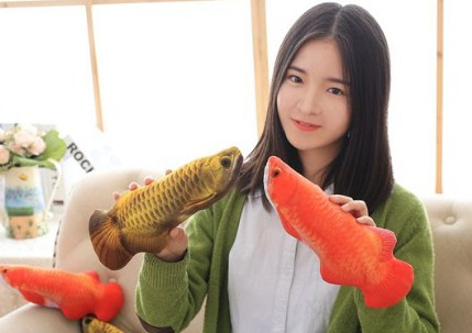 """IKAN ARWANA GOLDEN RED"""