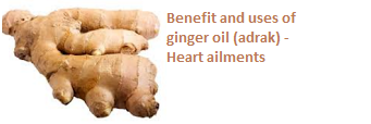 Benefit and uses of ginger oil (adrak) -  Heart ailments