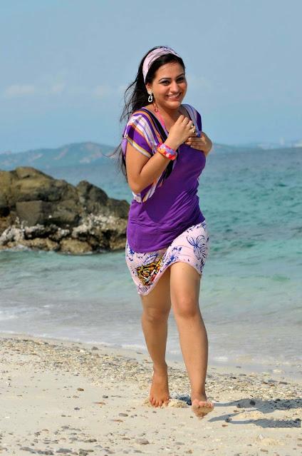 Aksha Pardasany Tollywood Actress Hot Pics Navel Queens