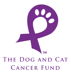 cancer fund logo