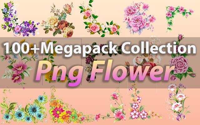 100+ Png Flowers Clipart Megapack Collection, Png Flower Corner & Border Free Download