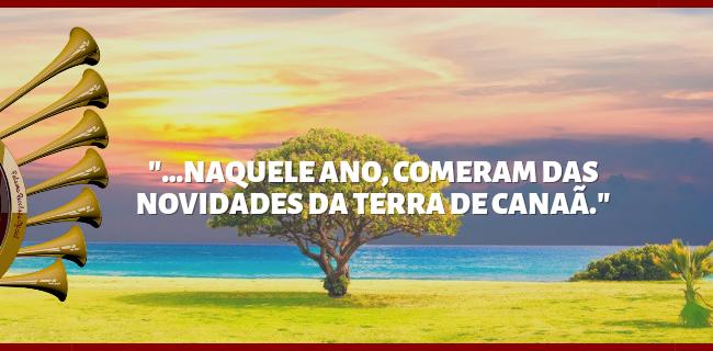"""""""...NAQUELE ANO, COMERAM DAS NOVIDADES DA TERRA DE CANAÃ."""""""