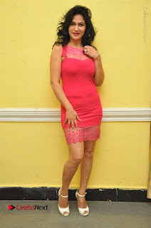Telugu Actress Vijaya Murthy Stills in Red Short Dress at Www.Meena Bazaar Movie Opening  0097.JPG