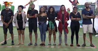 The Housemates are divided into two teams