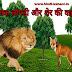 चालक लोमड़ी और शेर की कहानी | Chalak Lomdi Aur Sher ki kahani