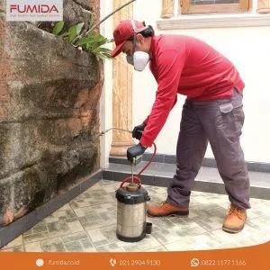 membasmi rayap bersama fumida