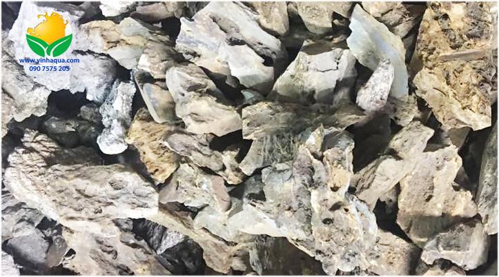 Phụ kiện thủy sinh, đá ong nâu rất được ưa chuộng
