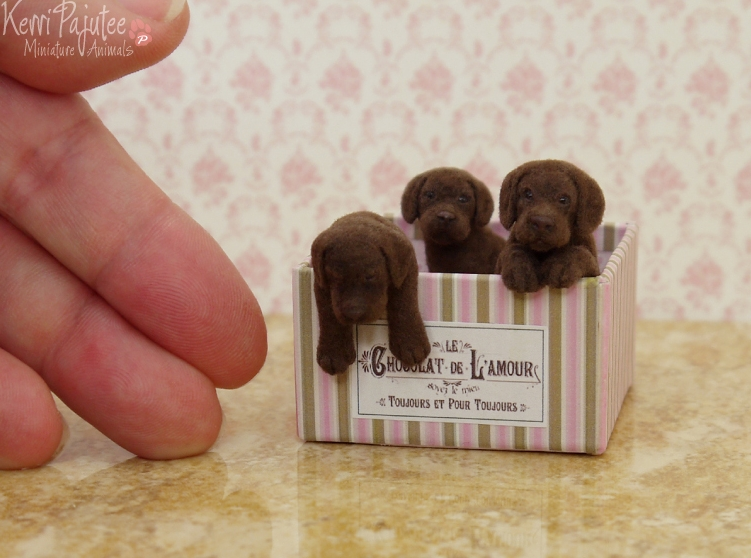 04-Chocolate-Lab-Pups-Kerri-Pajutee-Miniature-Sculpture-that-look-Real-www-designstack-co