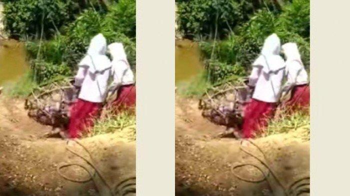 Kades Beberkan Fakta Sebenarnya di Balik Viral Video 3 Bocah SD Bergelantungan Sebrangi Sungai