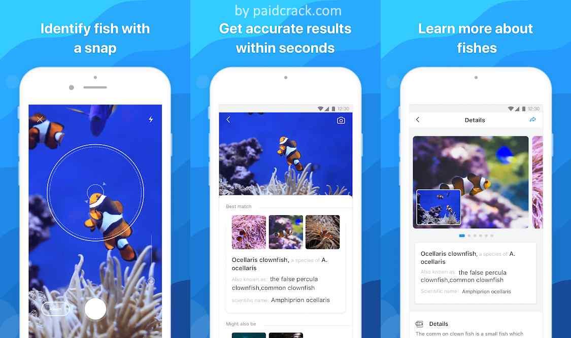 Picture Fish - Fish Identifier Premium Mod Apk 1.1.1