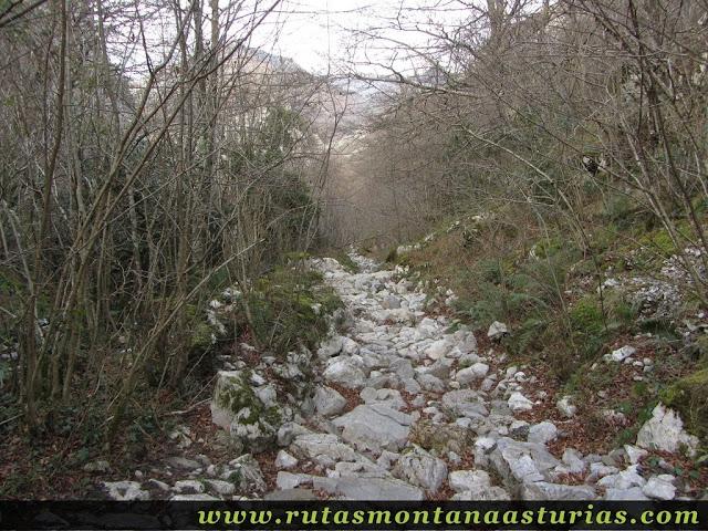 Piedras sobre el camino